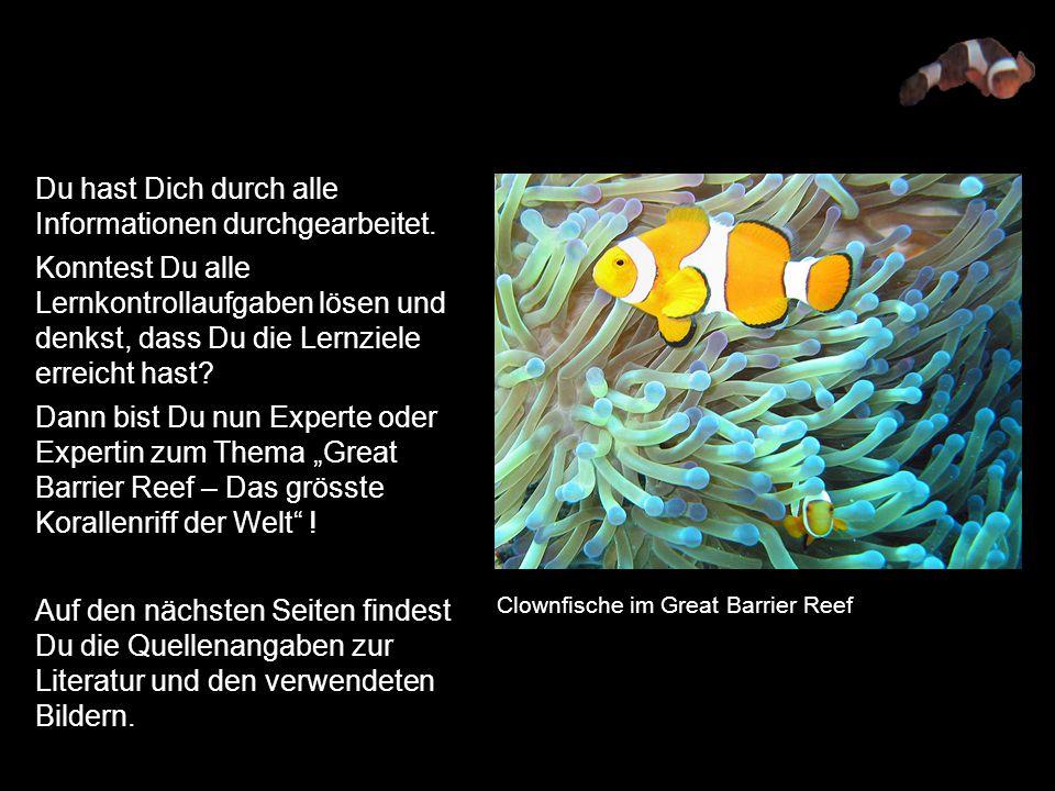 Fantastisch Literatur Koryphäe Arbeitsblatt Zeitgenössisch - Super ...