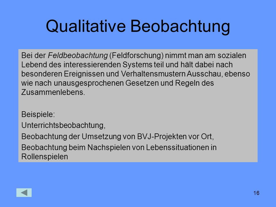 Qualitative Beobachtung
