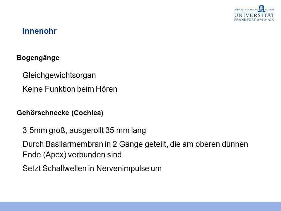 Gemütlich Grafik Mutter Funktionen Arbeitsblatt Bilder - Super ...