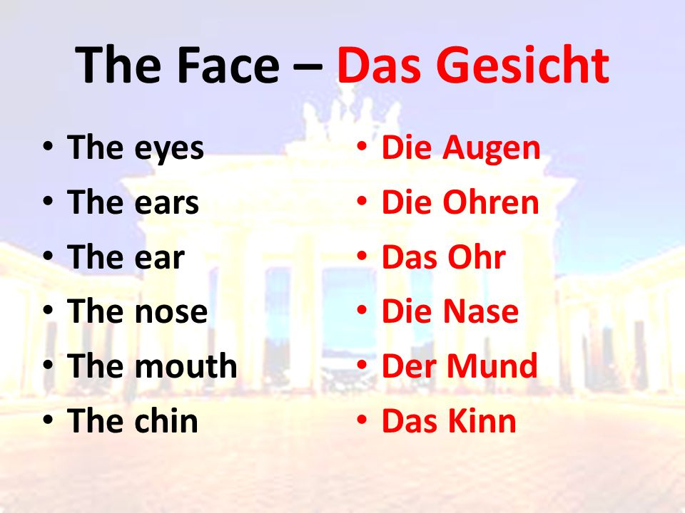 The Face – Das Gesicht The eyes The ears The ear The nose The mouth