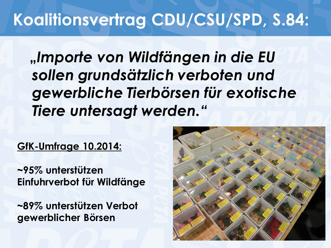 Koalitionsvertrag CDU/CSU/SPD, S.84: