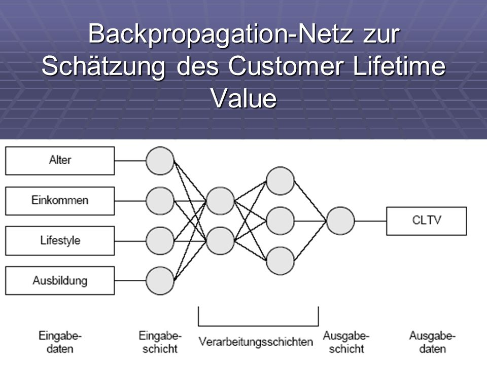 Backpropagation-Netz zur Schätzung des Customer Lifetime Value