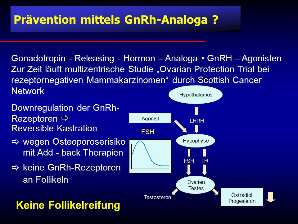 Prävention mittels GnRh-Analoga