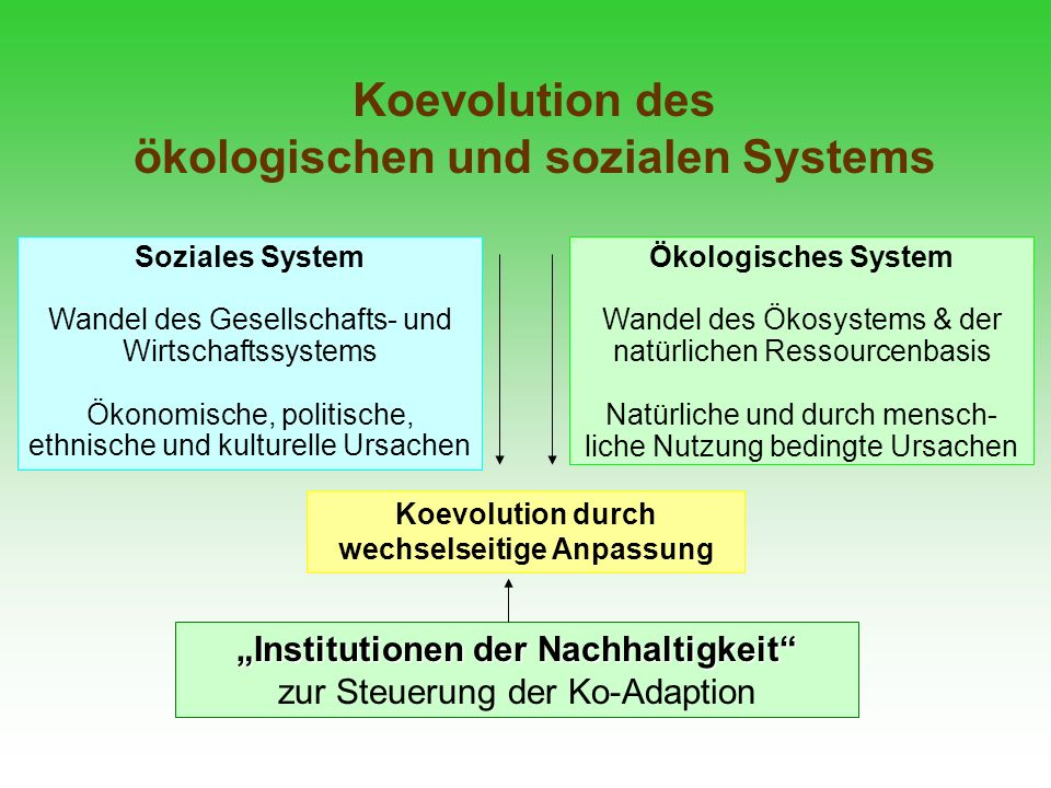 koevolution des kologischen und sozialen systems - Koevolution Beispiele