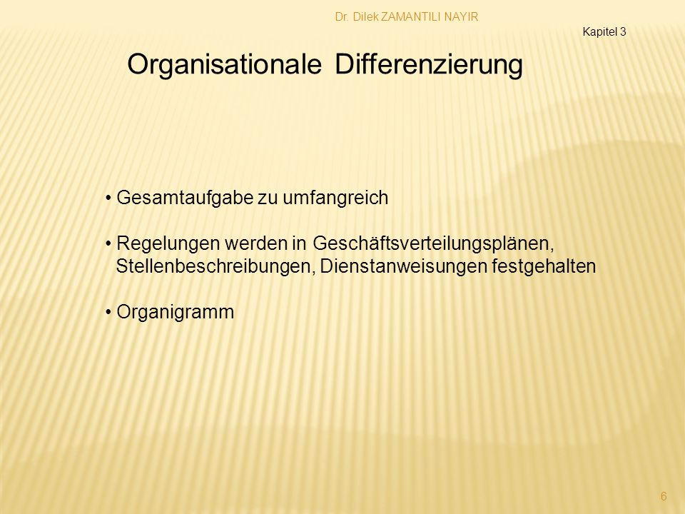 Organisationale Differenzierung