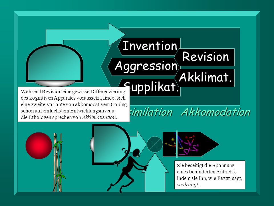 Invention Revision Aggression Akklimat. Supplikat. Assimilation