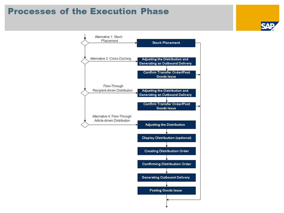 Processes of the Execution Phase