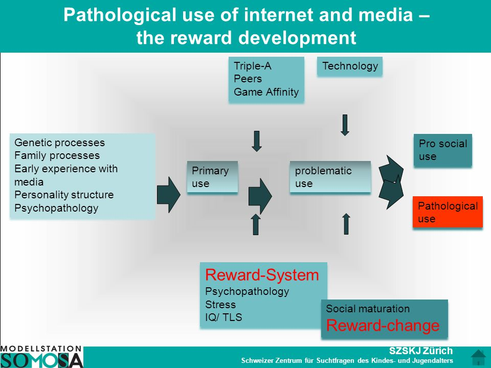 Pathological use of internet and media – the reward development