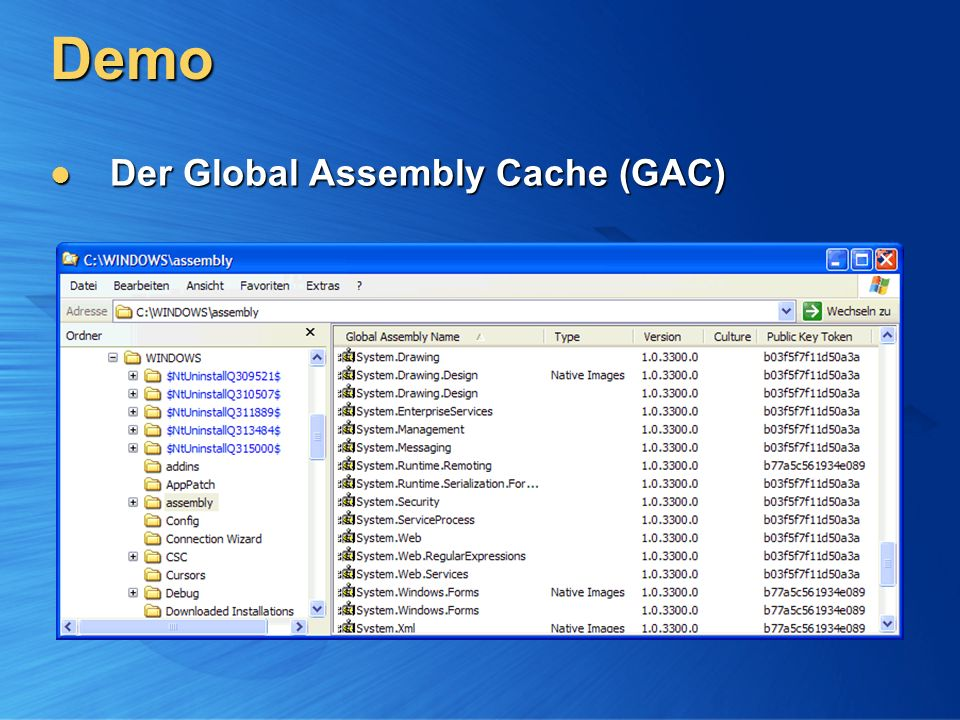 Demo Der Global Assembly Cache (GAC)