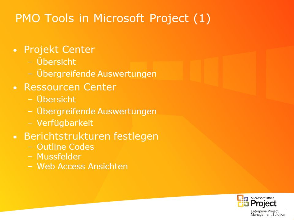 PMO Tools in Microsoft Project (1)