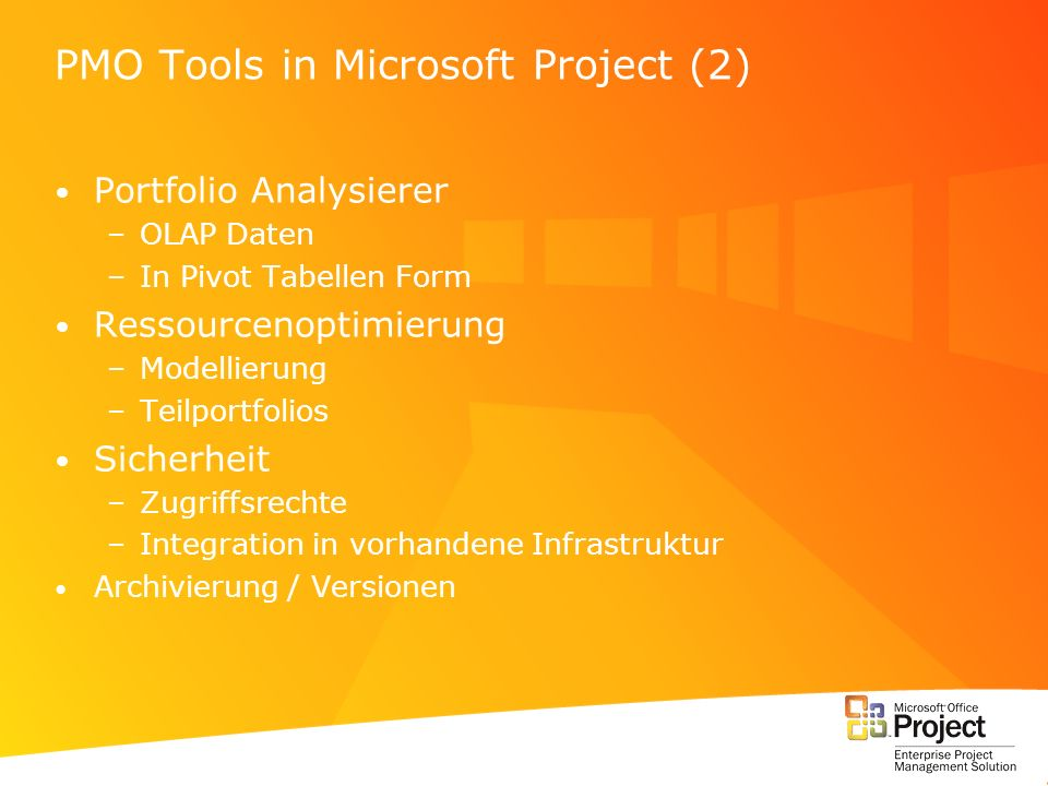 PMO Tools in Microsoft Project (2)