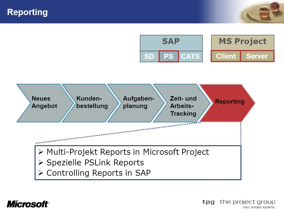 Reporting SAP MS Project Multi-Projekt Reports in Microsoft Project