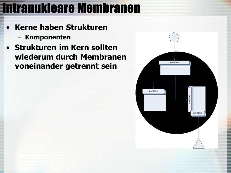 Intranukleare Membranen