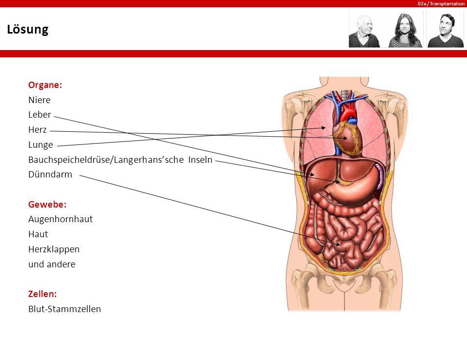 Begriff: Transplantation - ppt video online herunterladen