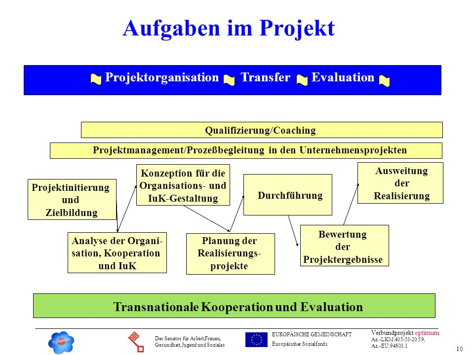 Aufgaben im Projekt Projektorganisation Transfer Evaluation