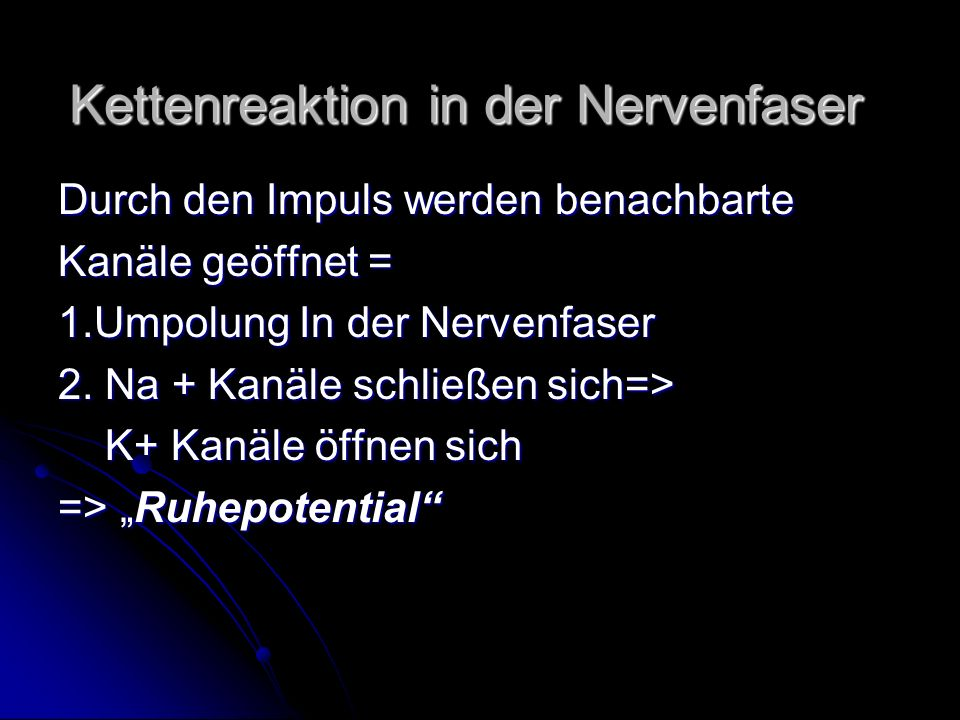 Kettenreaktion in der Nervenfaser
