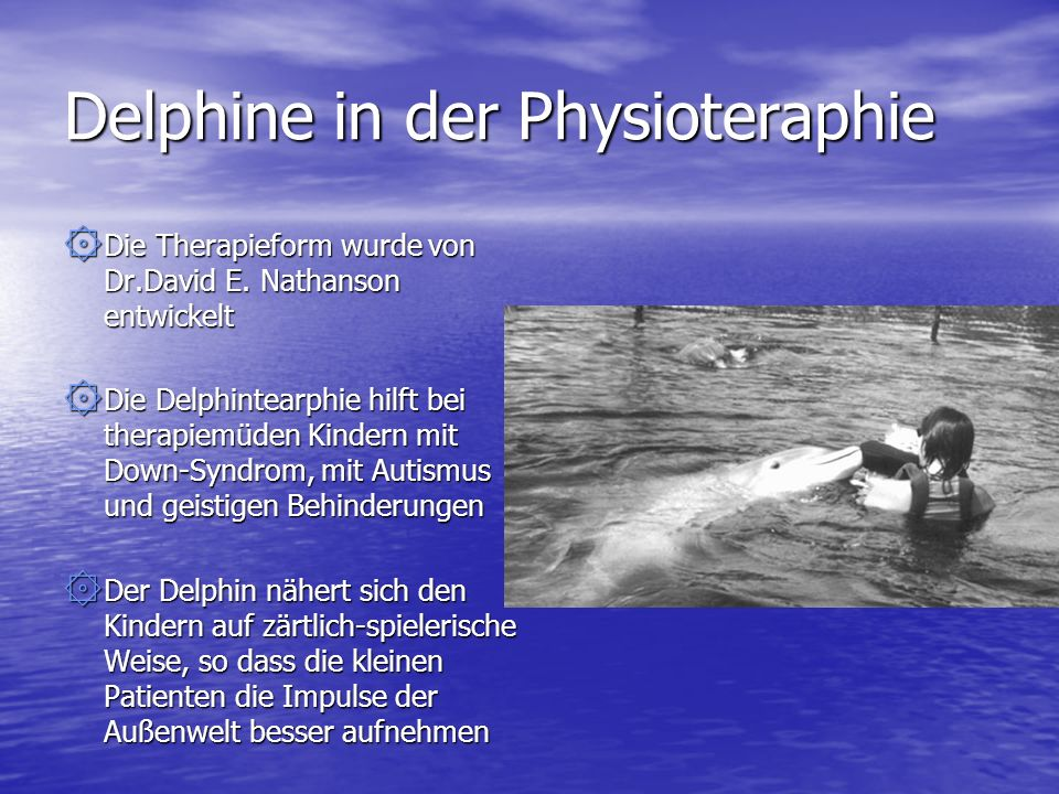 Delphine in der Physioteraphie
