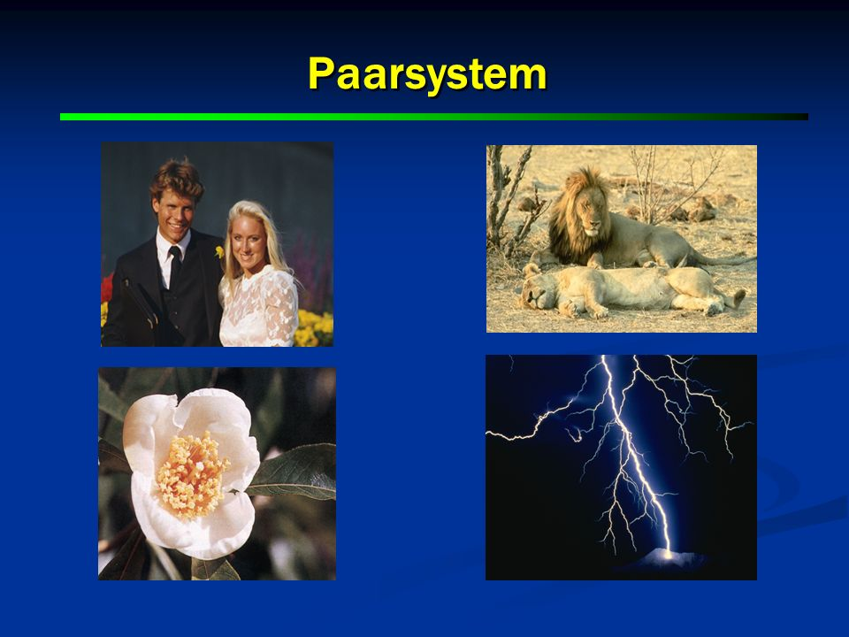 Paarsystem