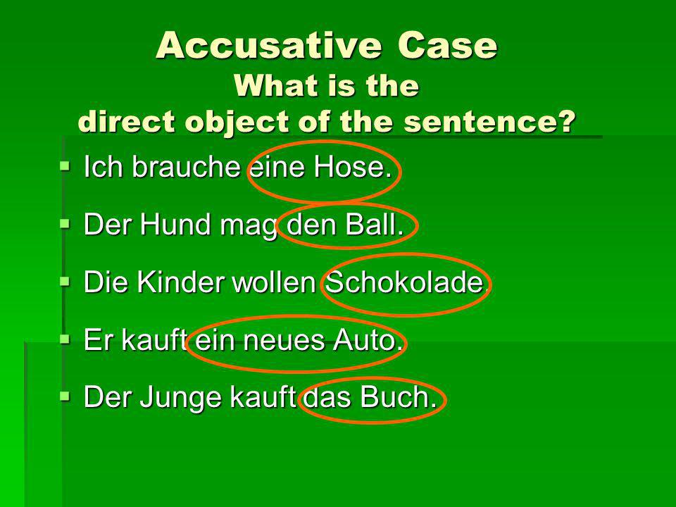 Accusative Case What is the direct object of the sentence