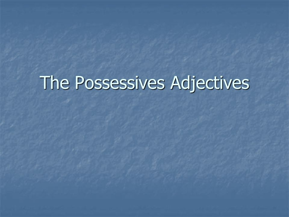 The Possessives Adjectives