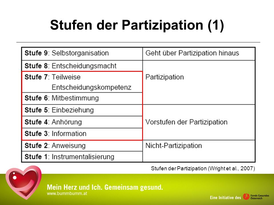 Stufen der Partizipation (1)
