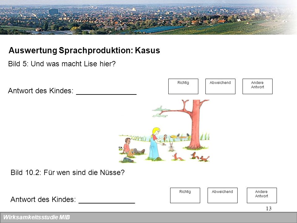 Auswertung Sprachproduktion: Kasus