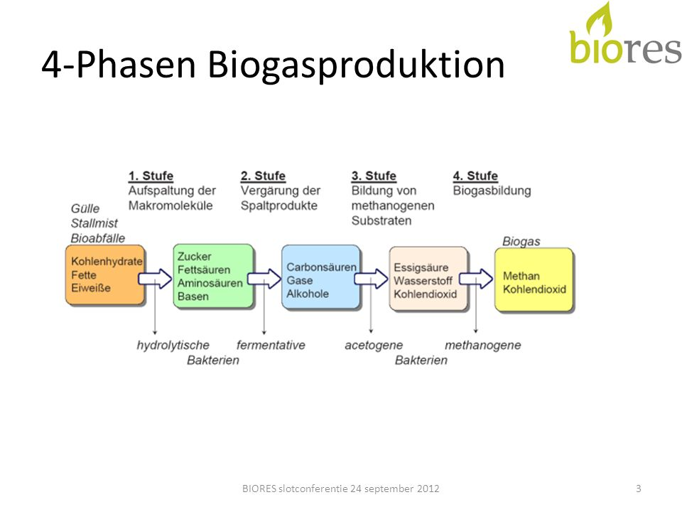 4-Phasen Biogasproduktion