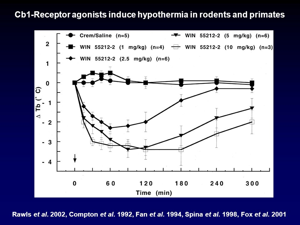 Cb1-Receptor agonists induce hypothermia in rodents and primates