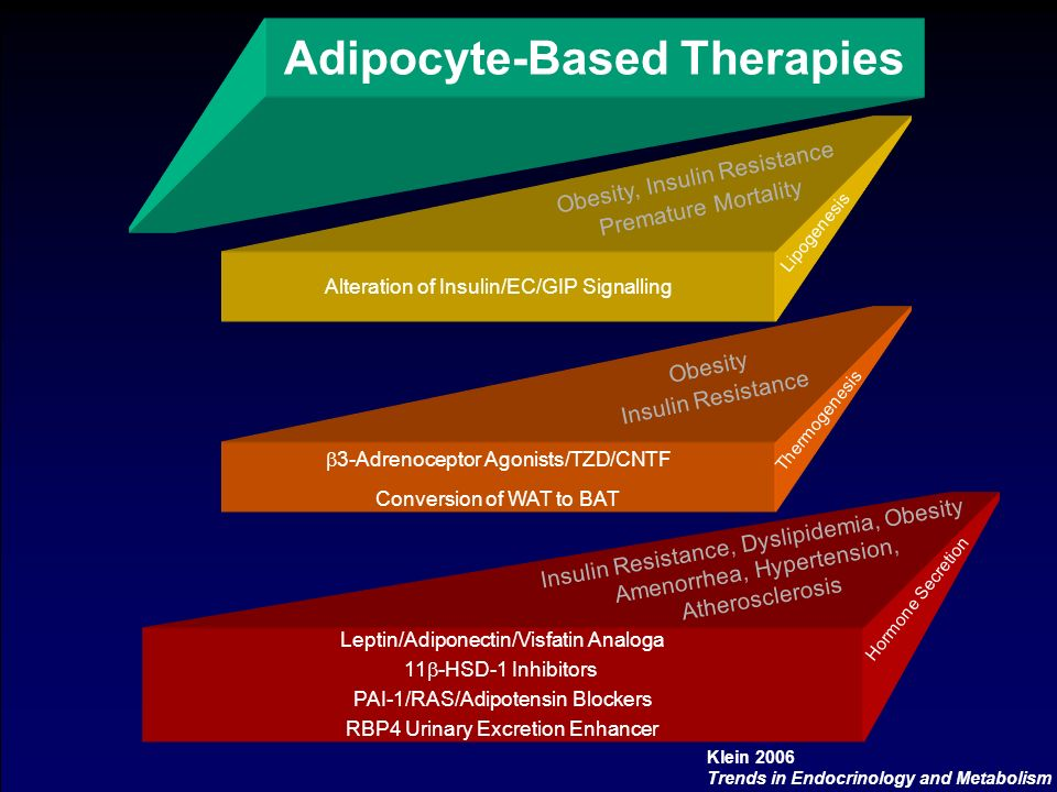 Adipocyte-Based Therapies