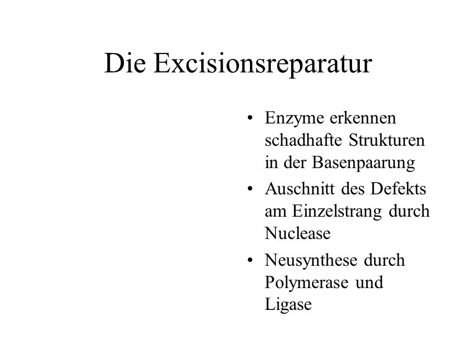 Die Excisionsreparatur