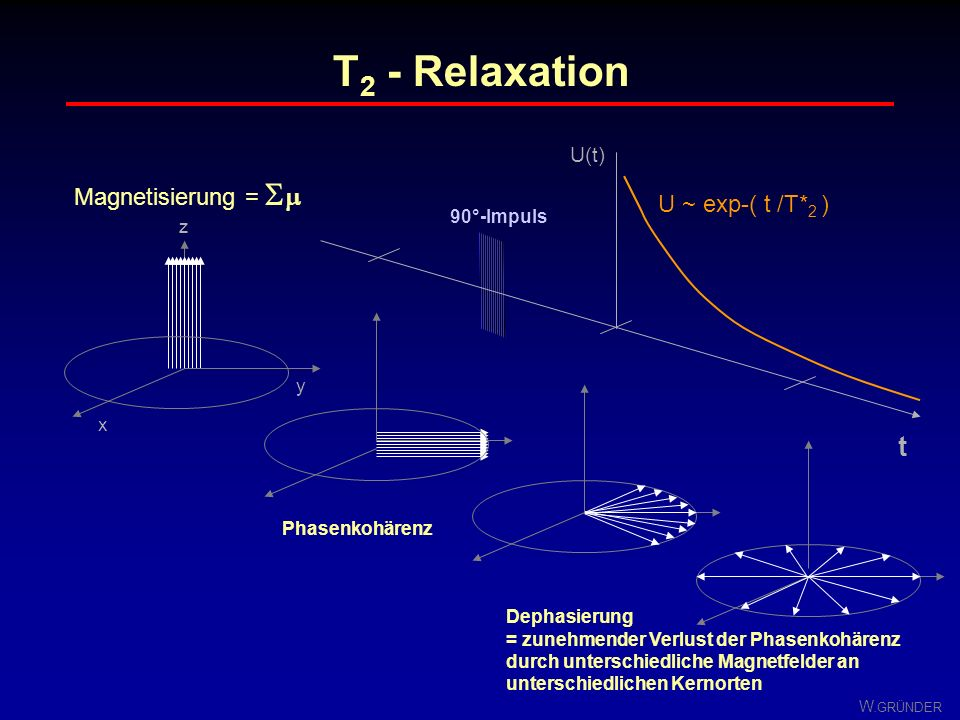 T2 - Relaxation t Magnetisierung =  U ~ exp-( t /T*2 ) U(t)