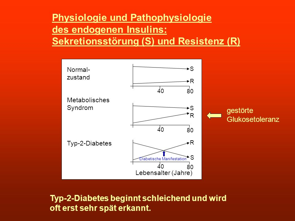 Physiologie und Pathophysiologie des endogenen Insulins: