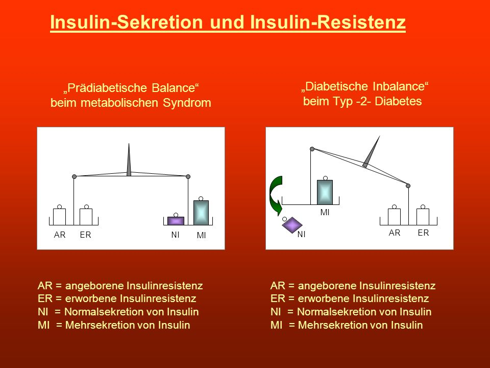 Insulin-Sekretion und Insulin-Resistenz