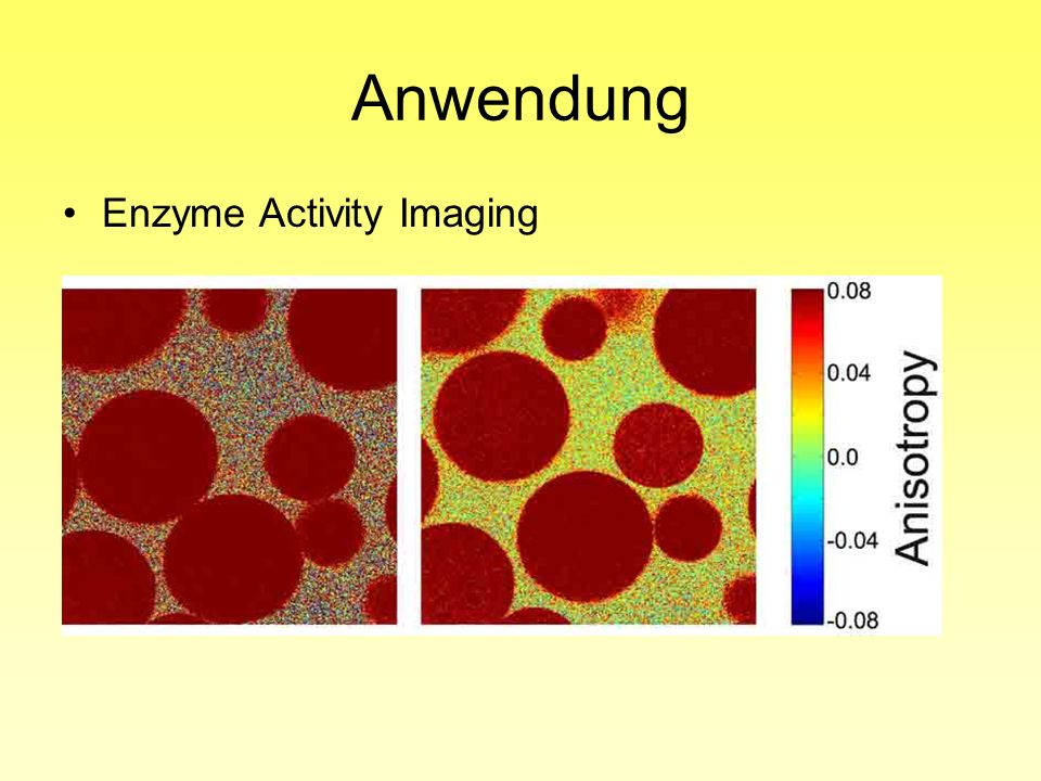 Anwendung Enzyme Activity Imaging