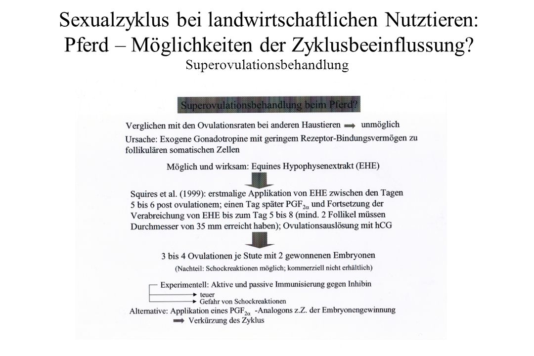 Superovulationsbehandlung