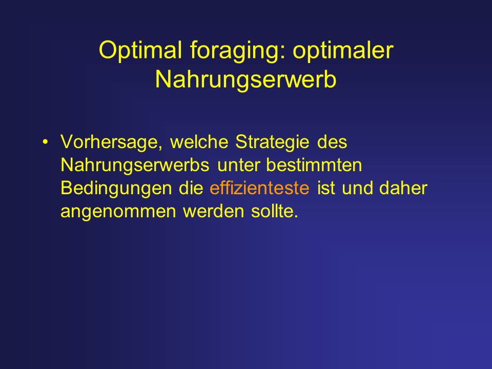 Optimal foraging: optimaler Nahrungserwerb