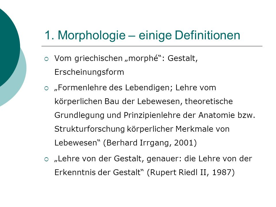 1. Morphologie – einige Definitionen