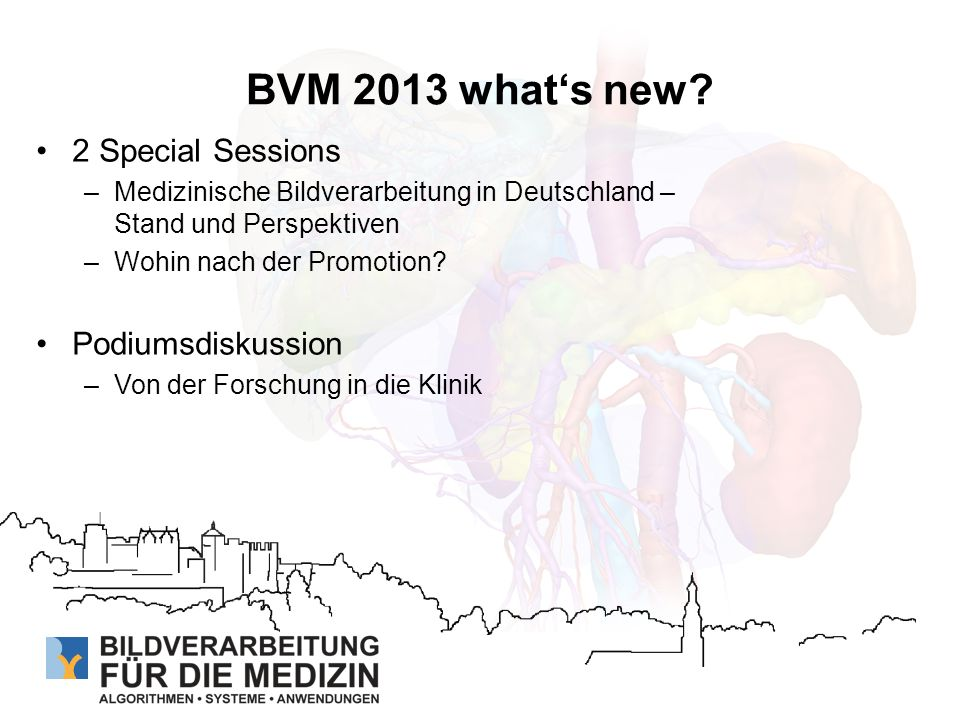 BVM 2013 what's new 2 Special Sessions Podiumsdiskussion