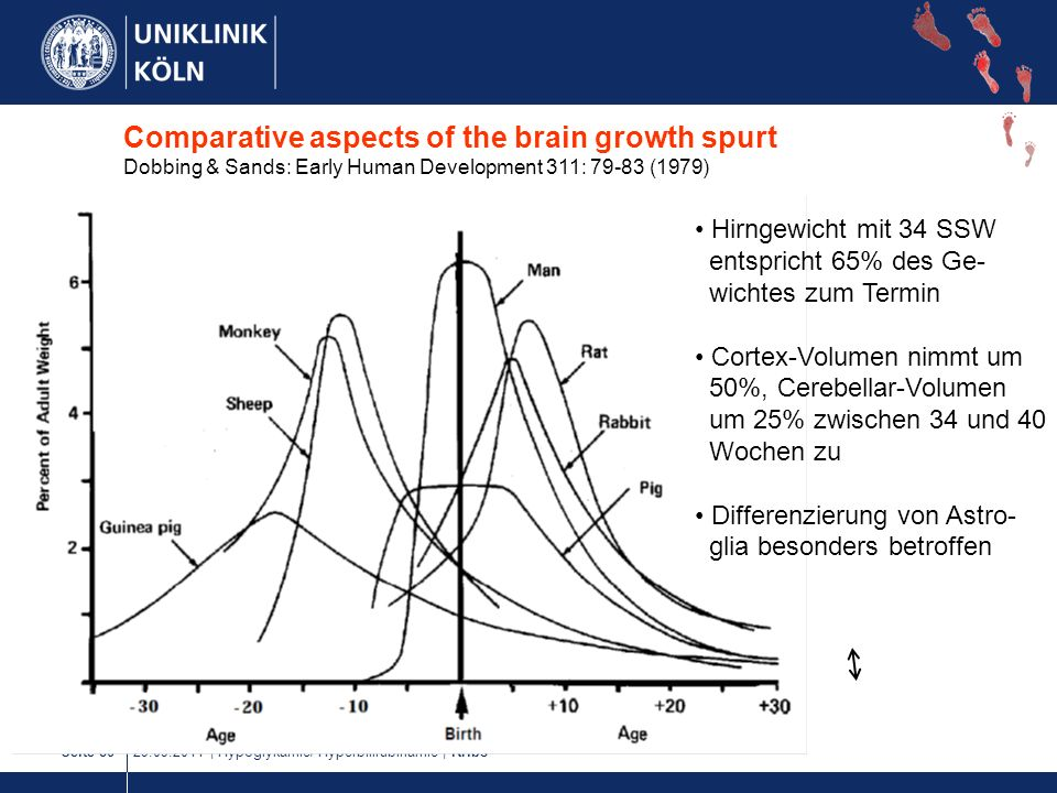 Comparative aspects of the brain growth spurt