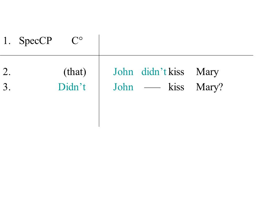 SpecCP C° (that) John didn't kiss Mary Didn't John ––– kiss Mary