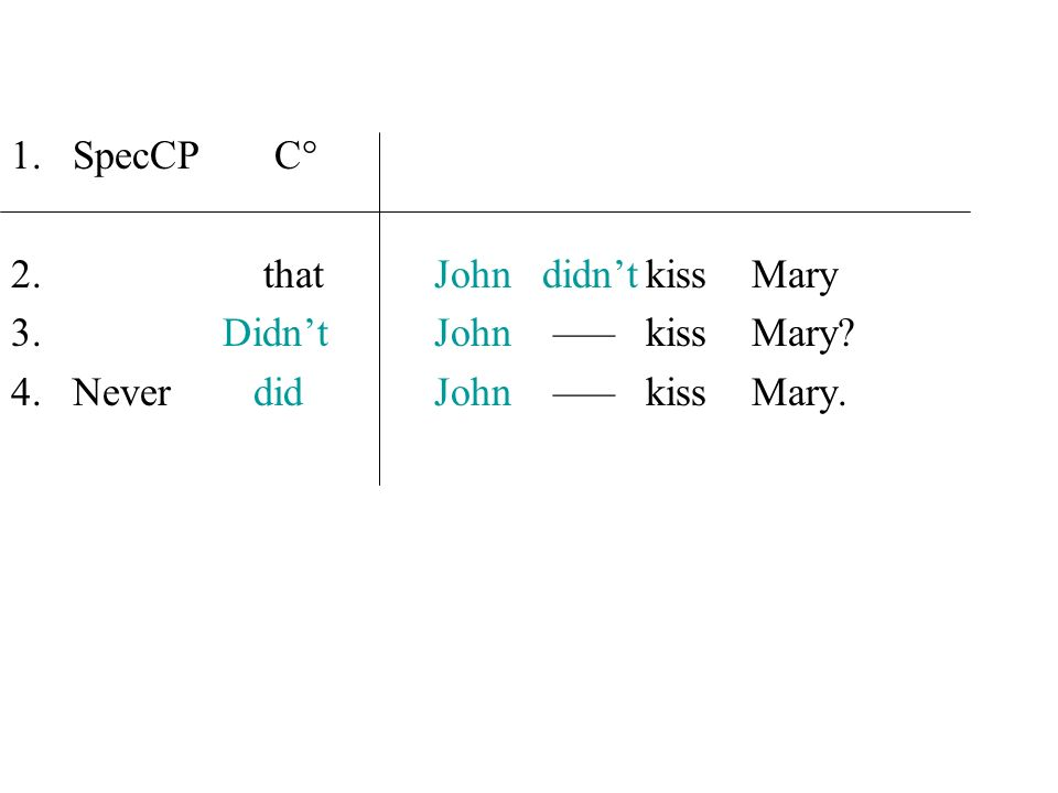 SpecCP C° that John didn't kiss Mary. Didn't John ––– kiss Mary.