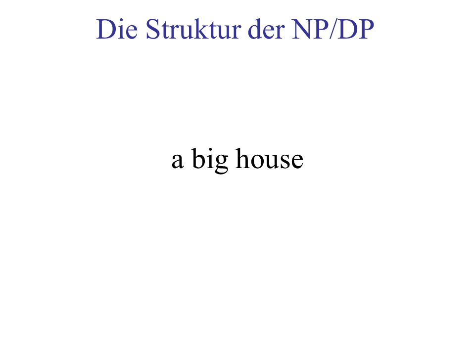 Die Struktur der NP/DP a big house
