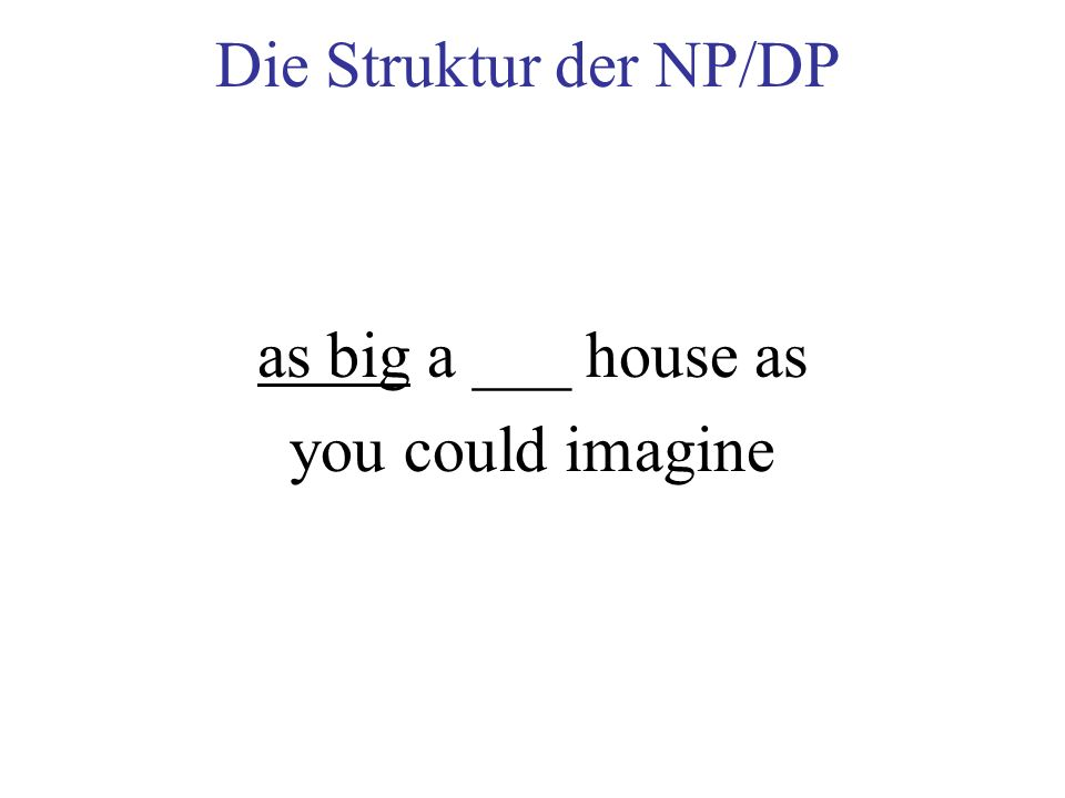 Die Struktur der NP/DP as big a ___ house as you could imagine