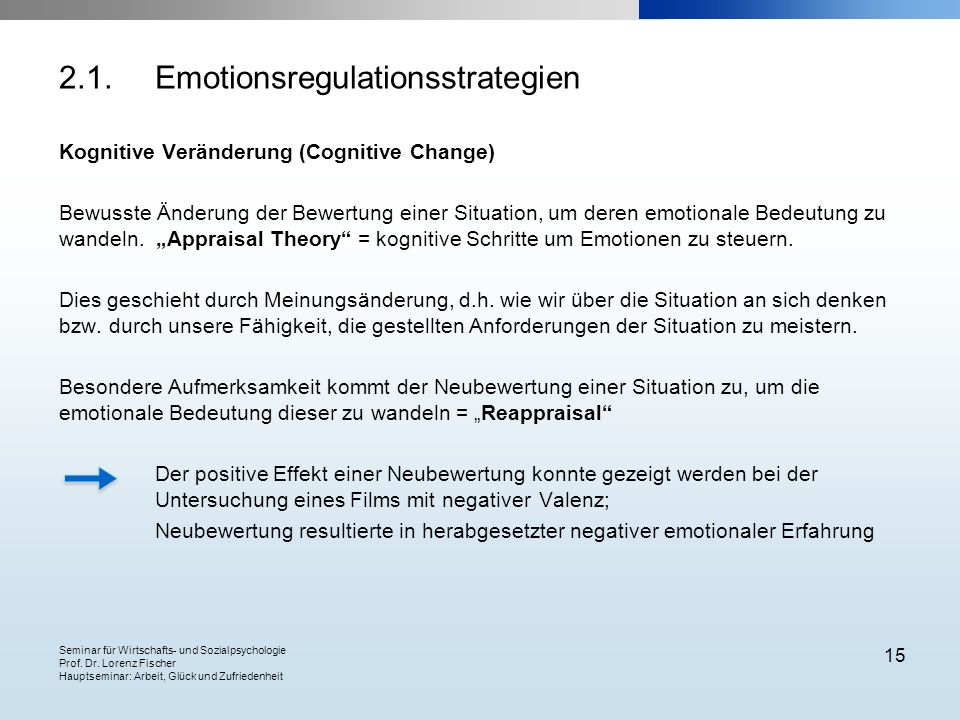 2.1. Emotionsregulationsstrategien