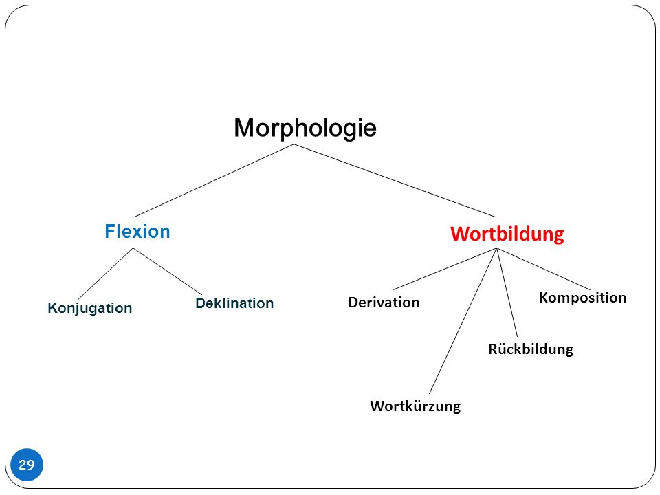 Morphologie Wortbildung Flexion Komposition Deklination Derivation