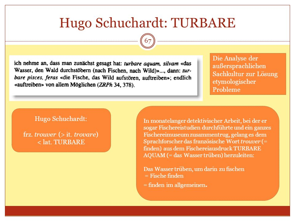 Hugo Schuchardt: TURBARE