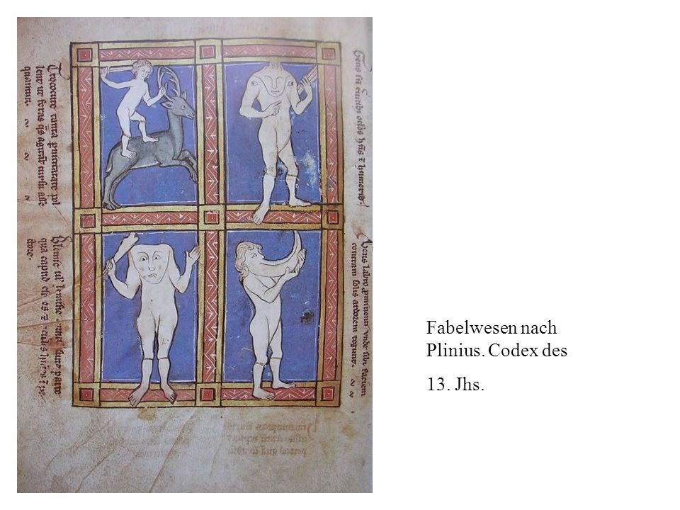 Fabelwesen nach Plinius. Codex des