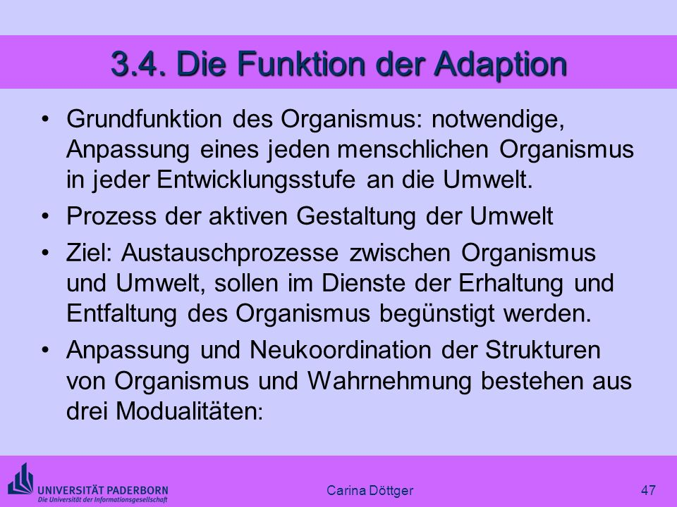 3.4. Die Funktion der Adaption
