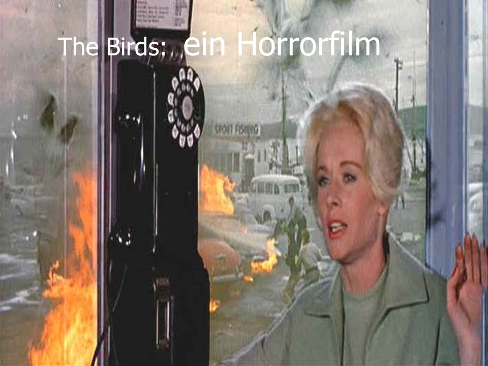 The Birds: ein Horrorfilm