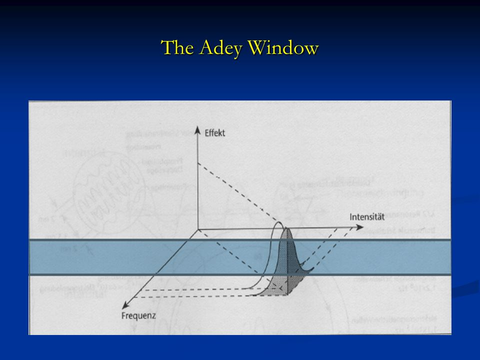 The Adey Window